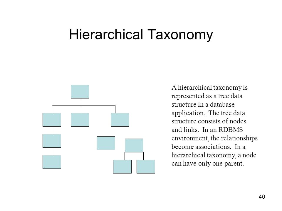 40 Hierarchical Taxonomy A hierarchical taxonomy is represented as a tree data structure in a database application. The tree data structure consists o