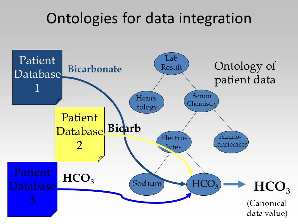 Ontologies for data integration Hema- tology Lab Result Serum Chemistry Electro- lytes Amino- transferases Sodium HCO 3 Patient Database 1 Patient Dat