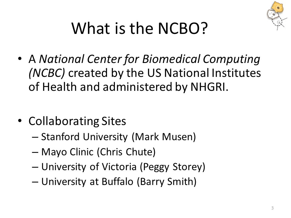 What is the NCBO.