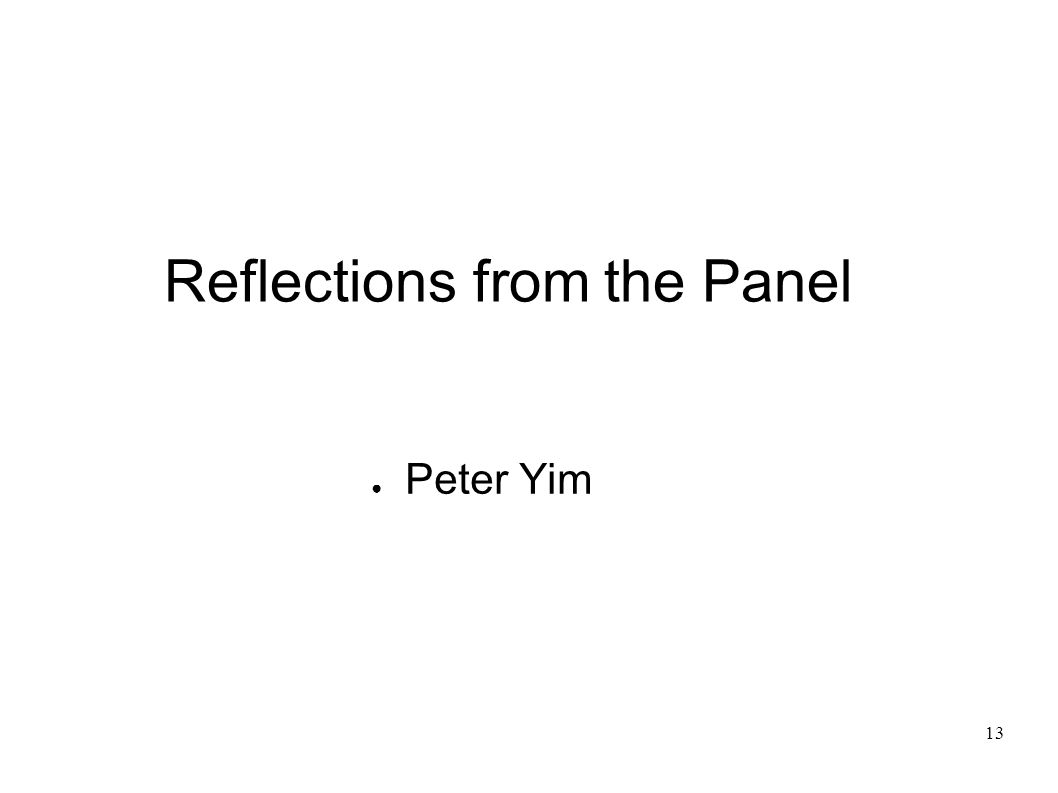 13 Reflections from the Panel Peter Yim