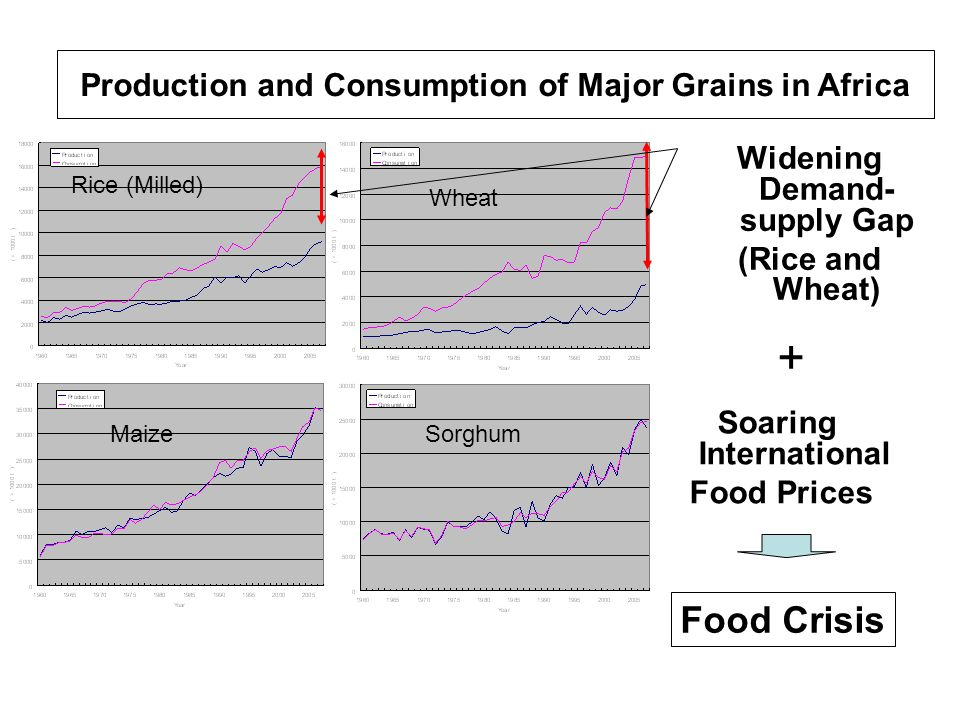 Production and Consumption of Major Grains in Africa Maize Rice (Milled) Wheat Sorghum Widening Demand- supply Gap (Rice and Wheat) Soaring Internatio