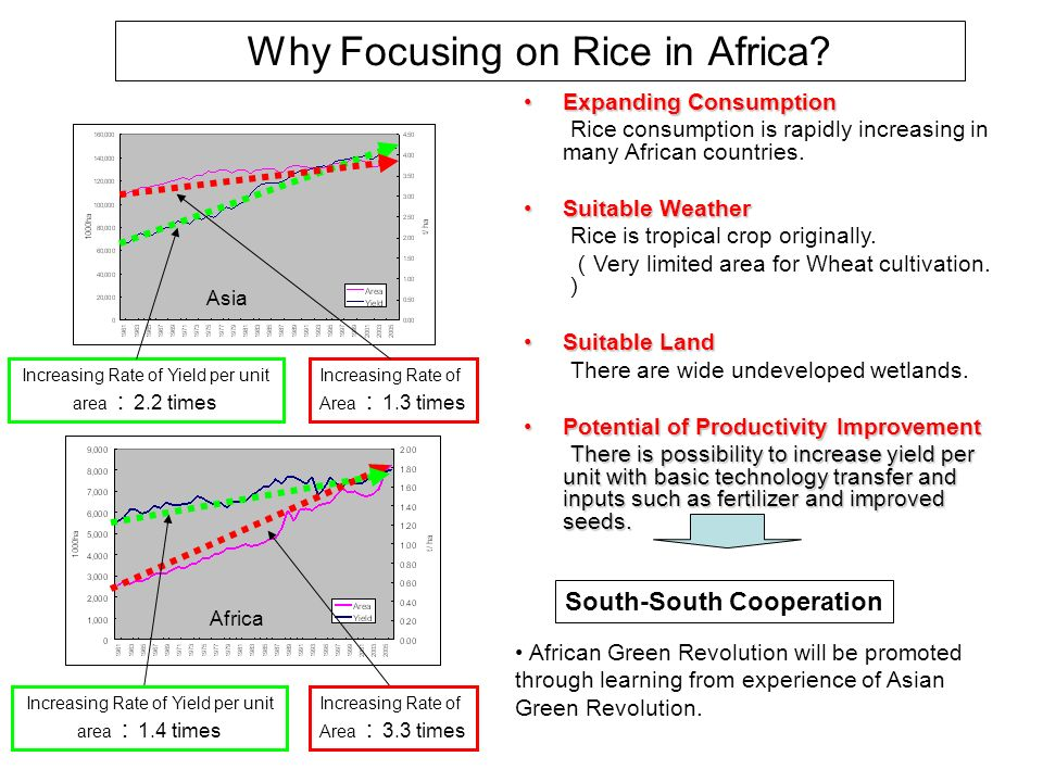 Why Focusing on Rice in Africa? Expanding ConsumptionExpanding Consumption Rice consumption is rapidly increasing in many African countries. Suitable