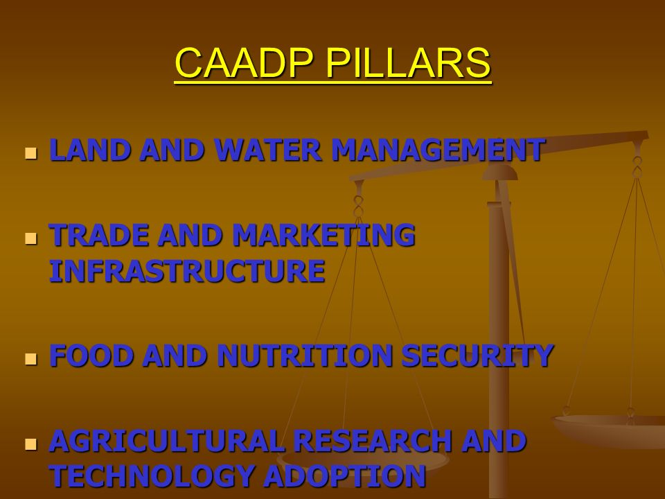 CAADP PILLARS LAND AND WATER MANAGEMENT LAND AND WATER MANAGEMENT TRADE AND MARKETING INFRASTRUCTURE TRADE AND MARKETING INFRASTRUCTURE FOOD AND NUTRI