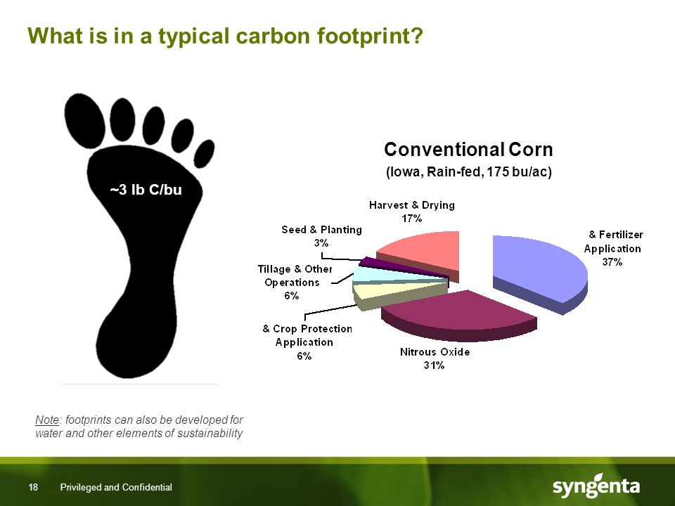 18 Privileged and Confidential What is in a typical carbon footprint.