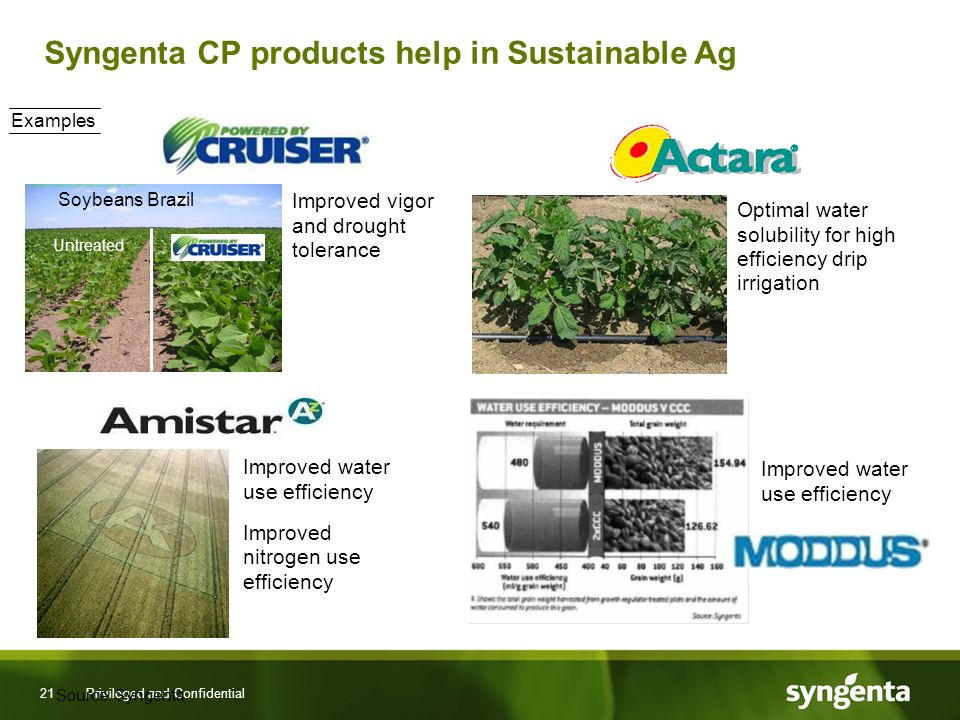 21 Privileged and Confidential Syngenta CP products help in Sustainable Ag Improved water use efficiency Improved nitrogen use efficiency Optimal water solubility for high efficiency drip irrigation Improved vigor and drought tolerance Soybeans Brazil Untreated Examples Improved water use efficiency Source: Syngenta