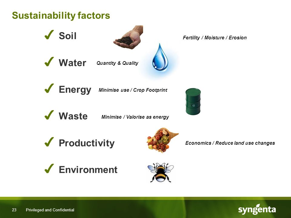 23 Privileged and Confidential Sustainability factors Soil Water Energy Waste Productivity Environment Quantity & Quality Minimise use / Crop Footprint Minimise / Valorise as energy Economics / Reduce land use changes Fertility / Moisture / Erosion