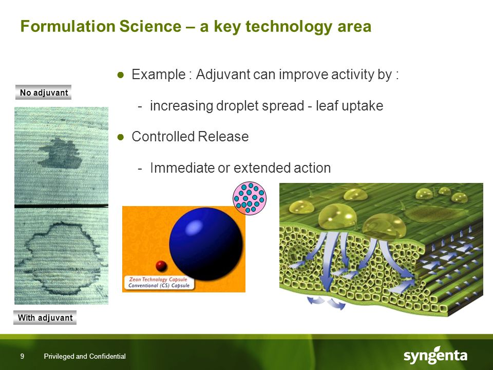 9 Privileged and Confidential Formulation Science – a key technology area Example : Adjuvant can improve activity by : -increasing droplet spread - leaf uptake Controlled Release -Immediate or extended action No adjuvant With adjuvant