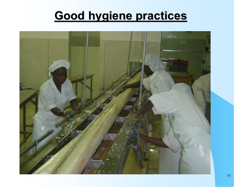 11 Good hygiene practices