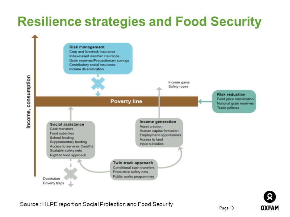 Page 10 Resilience strategies and Food Security Source : HLPE report on Social Protection and Food Security