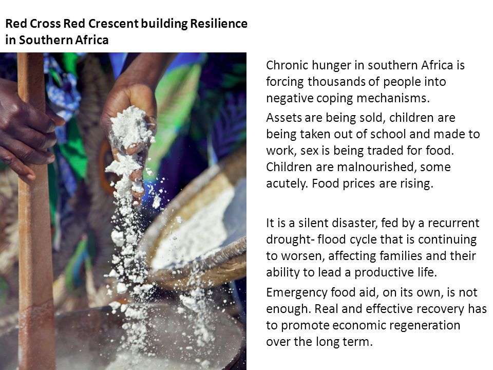 Red Cross Red Crescent building Resilience in Southern Africa Chronic hunger in southern Africa is forcing thousands of people into negative coping mechanisms.