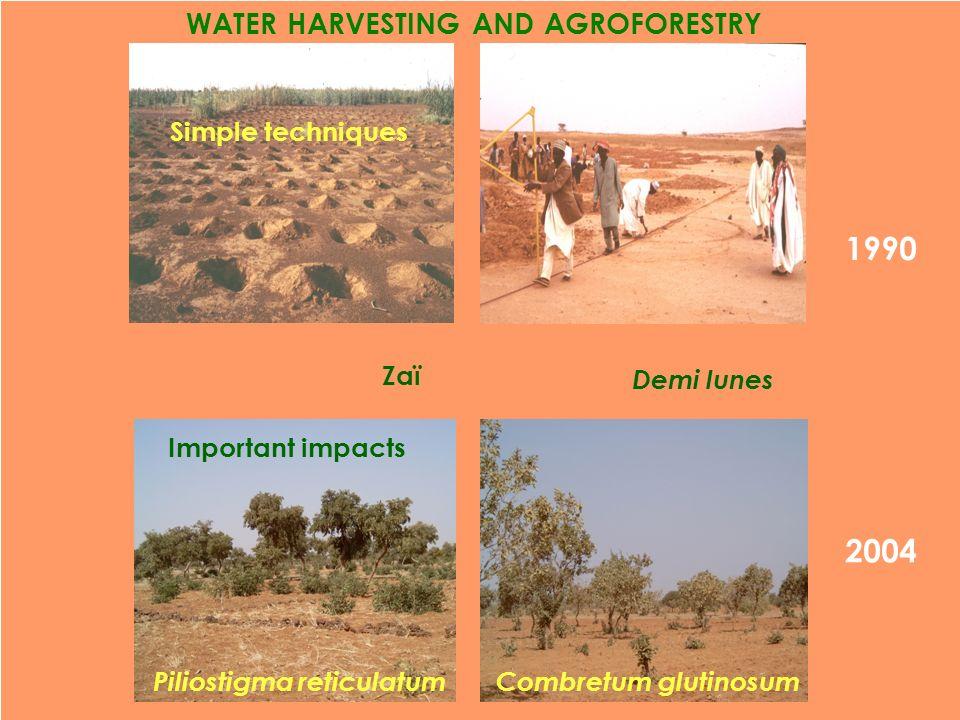 1990 WATER HARVESTING AND AGROFORESTRY 2004 Demi lunes Combretum glutinosum Zaï Simple techniques Piliostigma reticulatum Important impacts