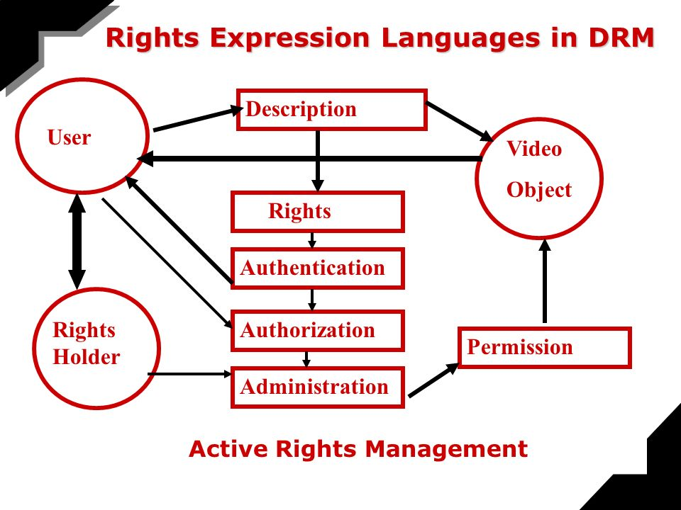 User Description Rights Holder Authentication Rights Video Object Permission Administration Authorization Active Rights Management Rights Expression Languages in DRM