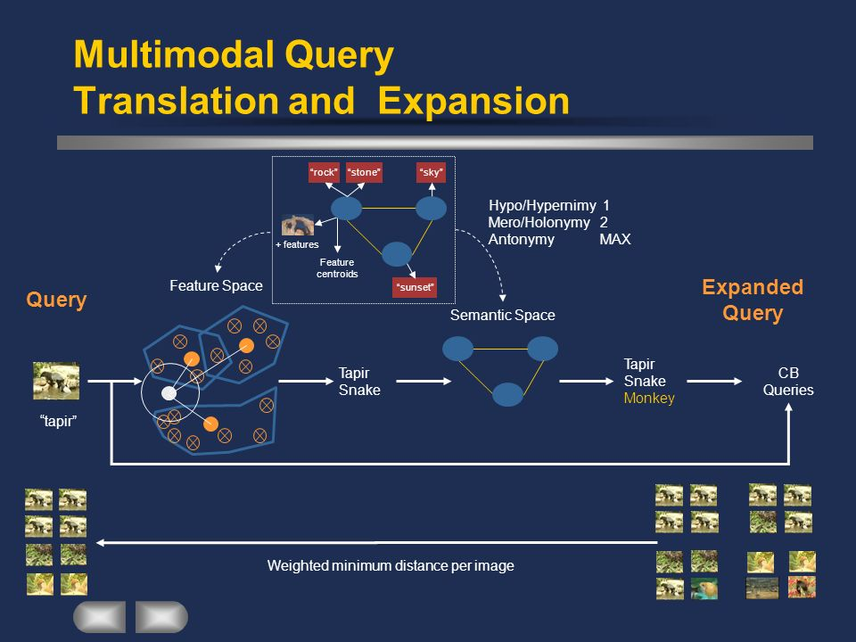 Multimodal Query Translation and Expansion tapir Weighted minimum distance per image Feature Space Tapir Snake Tapir Snake Monkey Semantic Space Hypo/