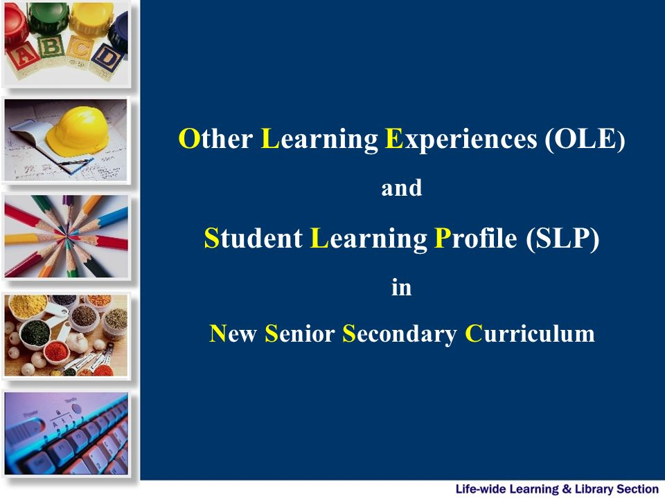 Major principles of OLE & SLP will be included in the Senior Secondary Curriculum Guide (firstly in web-version) in 2006