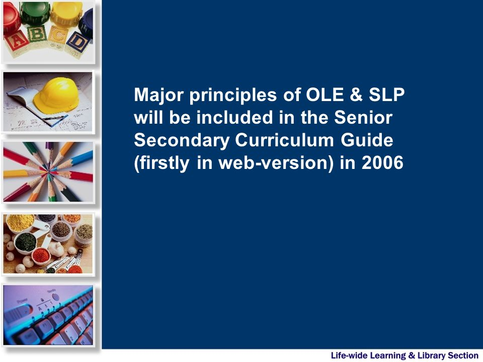 What would be in the SLP.e.g.