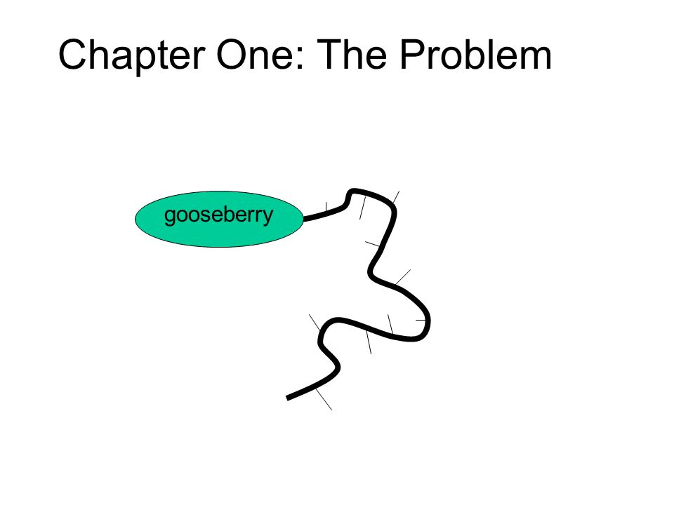 Chapter One: The Problem gooseberry