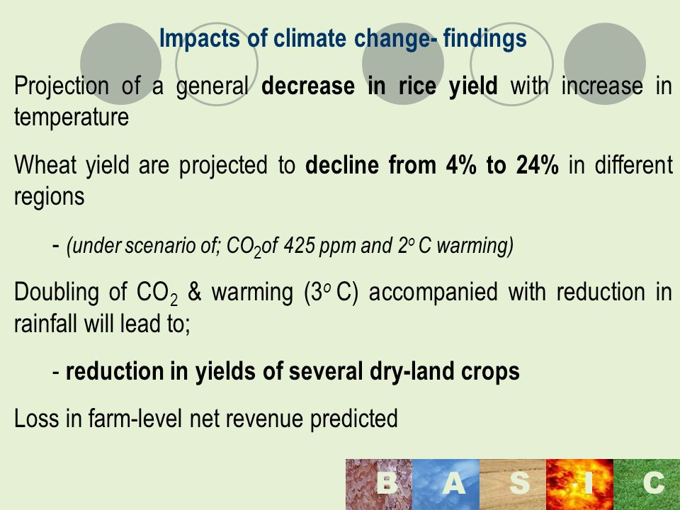 Maulana Azad National Institute of Technology, Bhopal, India BASI C Impacts of climate change- findings Projection of a general decrease in rice yield with increase in temperature Wheat yield are projected to decline from 4% to 24% in different regions - (under scenario of; CO 2 of 425 ppm and 2 o C warming) Doubling of CO 2 & warming (3 o C) accompanied with reduction in rainfall will lead to; - reduction in yields of several dry-land crops Loss in farm-level net revenue predicted
