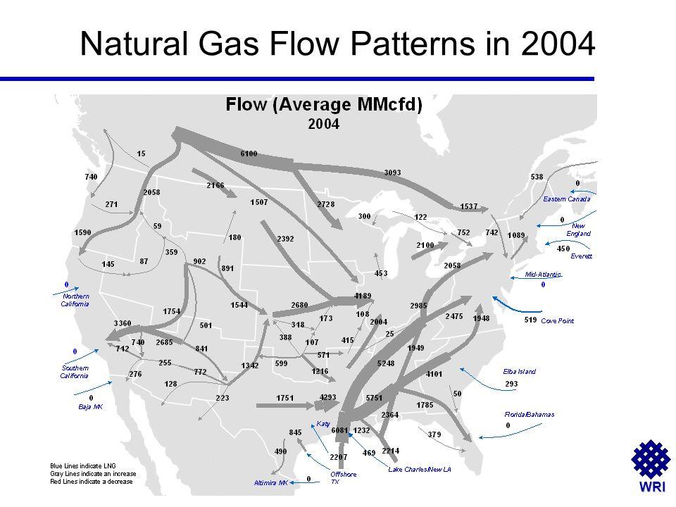WRI Natural Gas Flow Patterns in 2004