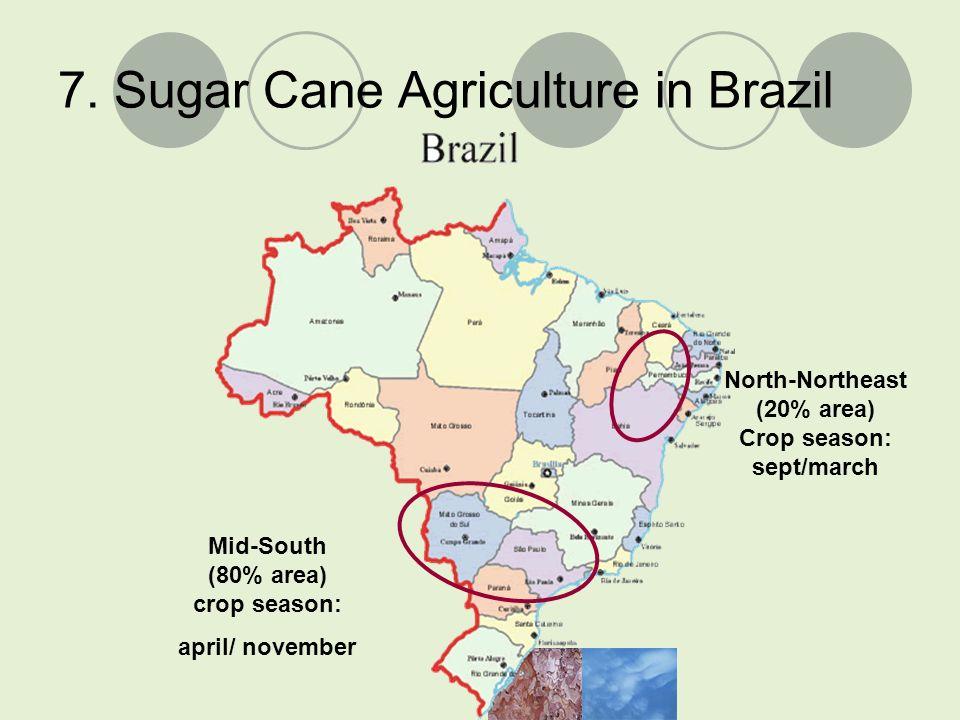 7. Sugar Cane Agriculture in Brazil Mid-South (80% area) crop season: april/ november North-Northeast (20% area) Crop season: sept/march