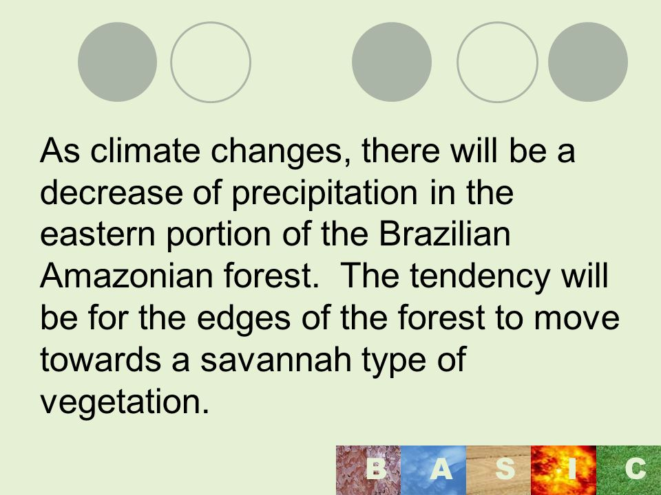 As climate changes, there will be a decrease of precipitation in the eastern portion of the Brazilian Amazonian forest.