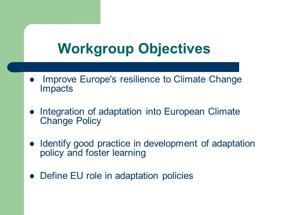 Workgroup Objectives Improve Europe s resilience to Climate Change Impacts Integration of adaptation into European Climate Change Policy Identify good practice in development of adaptation policy and foster learning Define EU role in adaptation policies