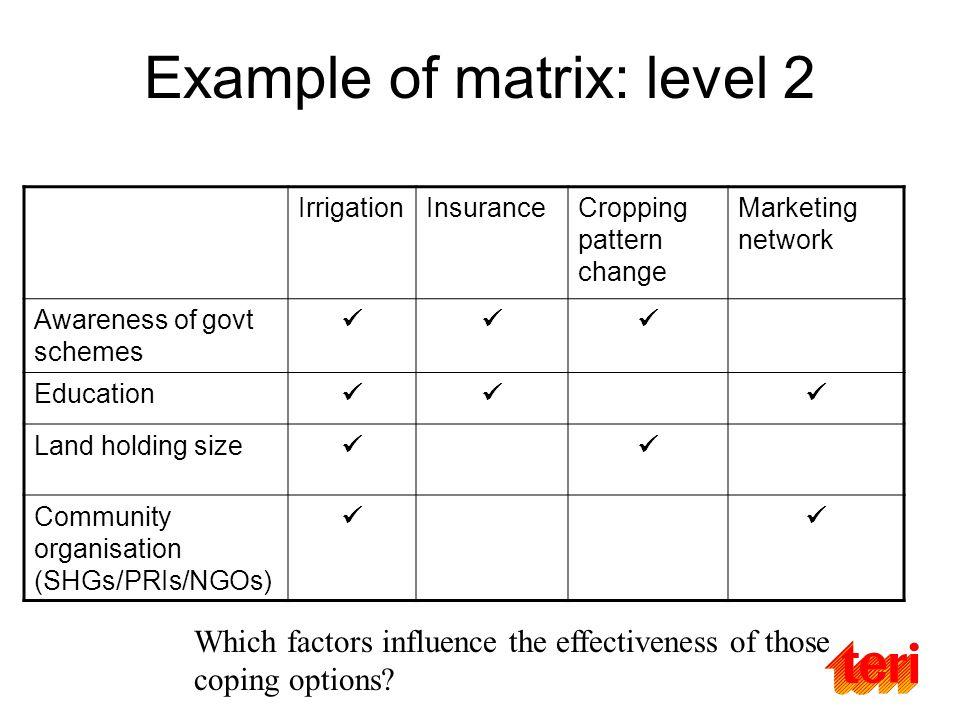 Example of matrix: level 2 IrrigationInsuranceCropping pattern change Marketing network Awareness of govt schemes Education Land holding size Communit