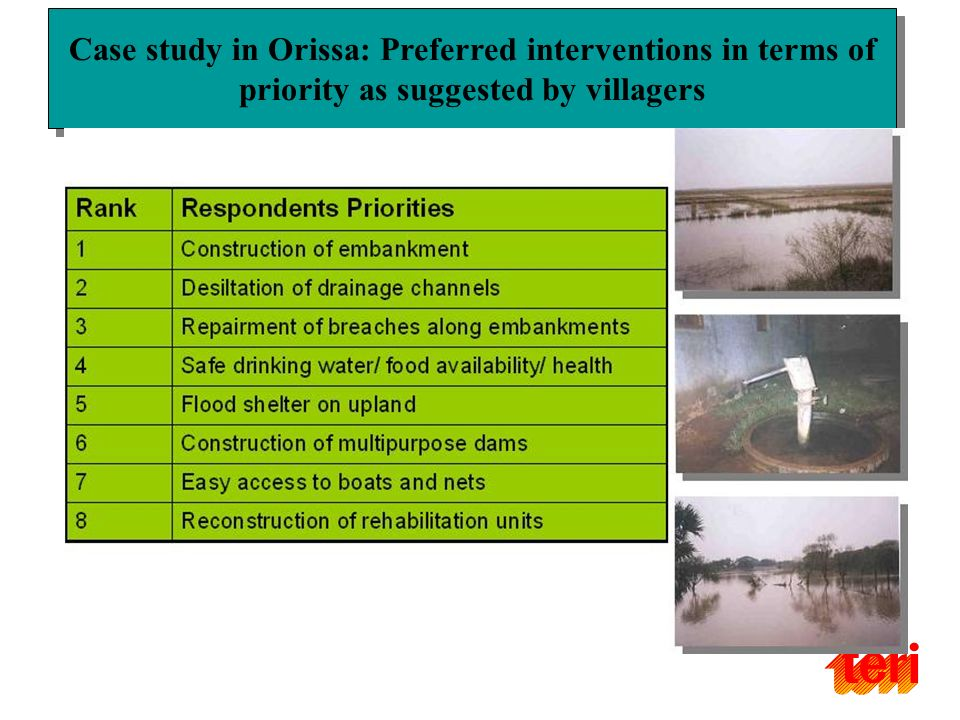 Case study in Orissa: Preferred interventions in terms of priority as suggested by villagers