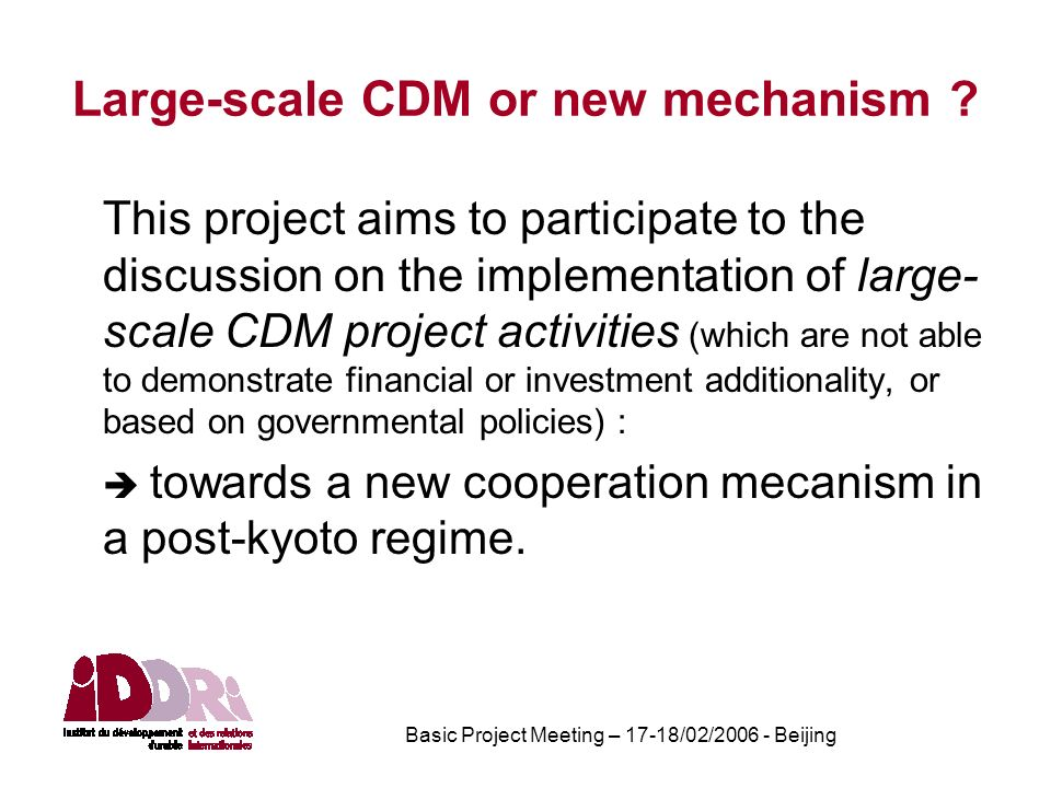 Basic Project Meeting – 17-18/02/2006 - Beijing Large-scale CDM or new mechanism .