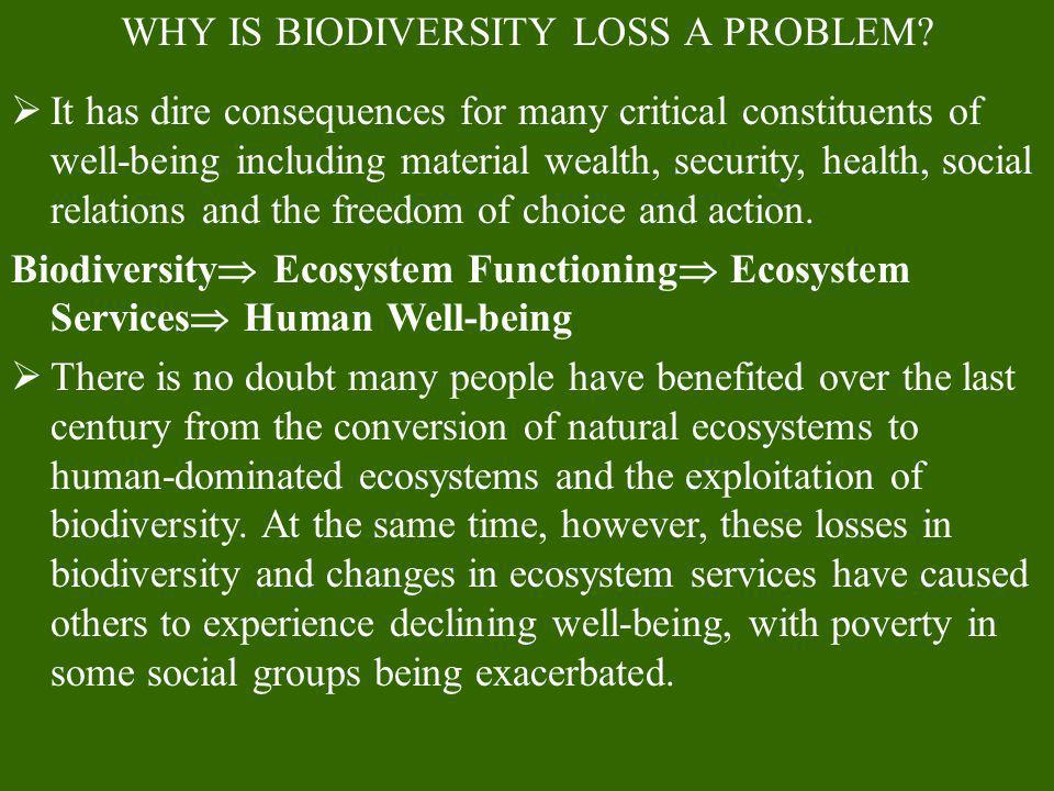 WHY IS BIODIVERSITY LOSS A PROBLEM? It has dire consequences for many critical constituents of well-being including material wealth, security, health,