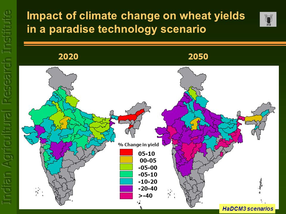 20202050 Impact of climate change on wheat yields in a paradise technology scenario 05-10 00-05 -05-00 -05-10 -10-20 -20-40 >-40 % Change in yield HaD