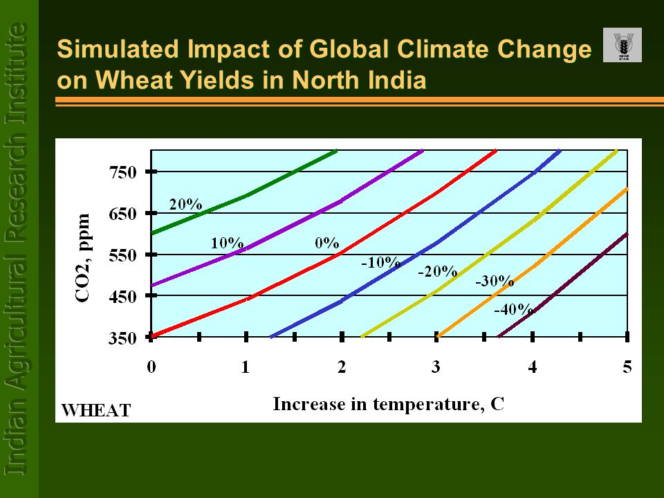 Simulated Impact of Global Climate Change on Wheat Yields in North India