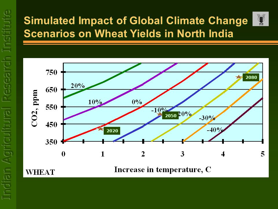 Simulated Impact of Global Climate Change Scenarios on Wheat Yields in North India 2020 2050 2080