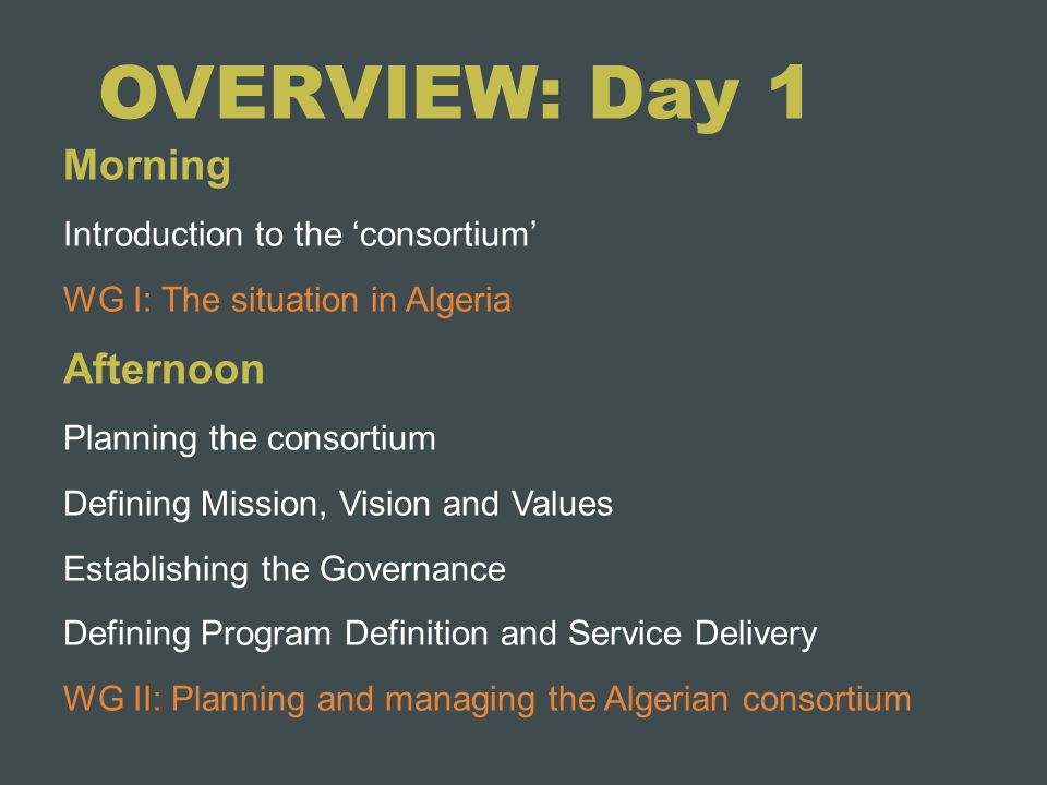 OVERVIEW: Day 1 Morning Introduction to the consortium WG I: The situation in Algeria Afternoon Planning the consortium Defining Mission, Vision and V