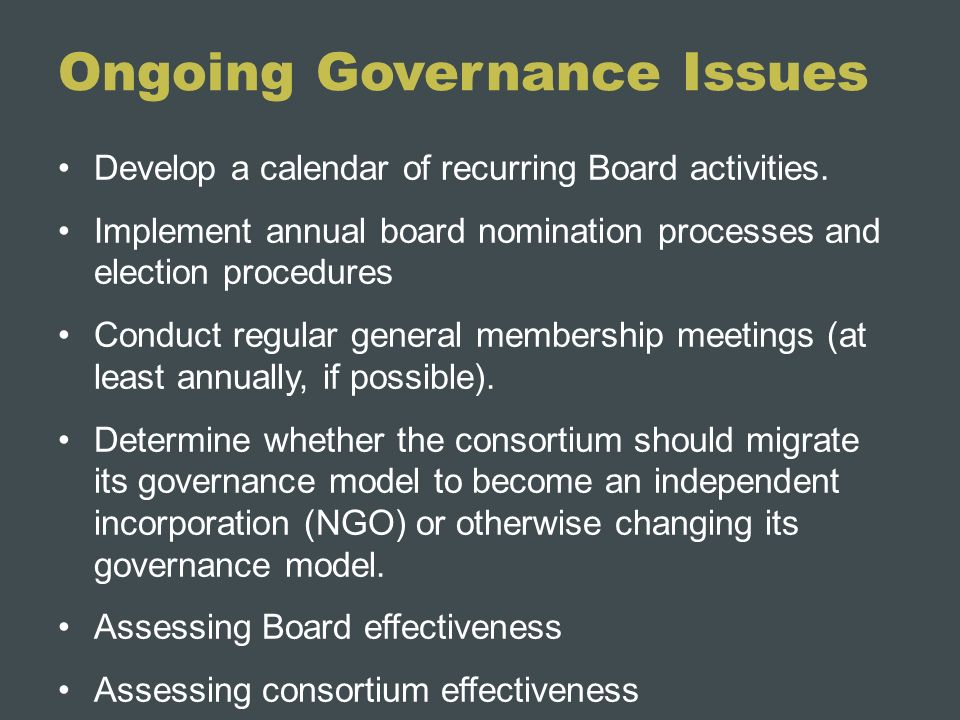 Ongoing Governance Issues Develop a calendar of recurring Board activities. Implement annual board nomination processes and election procedures Conduc