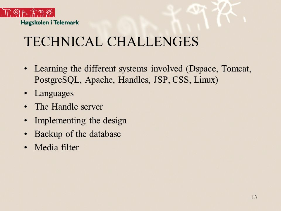 13 TECHNICAL CHALLENGES Learning the different systems involved (Dspace, Tomcat, PostgreSQL, Apache, Handles, JSP, CSS, Linux) Languages The Handle server Implementing the design Backup of the database Media filter