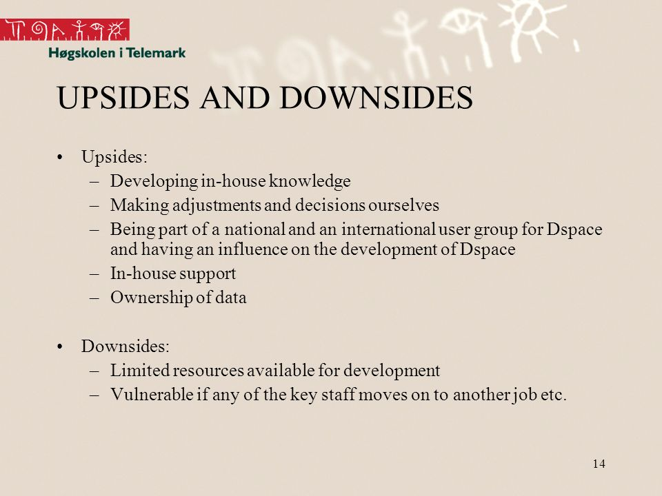 14 UPSIDES AND DOWNSIDES Upsides: –Developing in-house knowledge –Making adjustments and decisions ourselves –Being part of a national and an international user group for Dspace and having an influence on the development of Dspace –In-house support –Ownership of data Downsides: –Limited resources available for development –Vulnerable if any of the key staff moves on to another job etc.