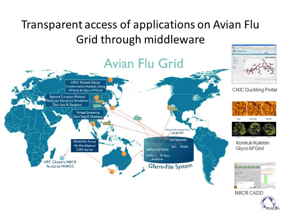 Transparent access of applications on Avian Flu Grid through middleware CNIC Duckling Portal Konkuk/Kukmin Glyco-M*Grid NBCR CADD