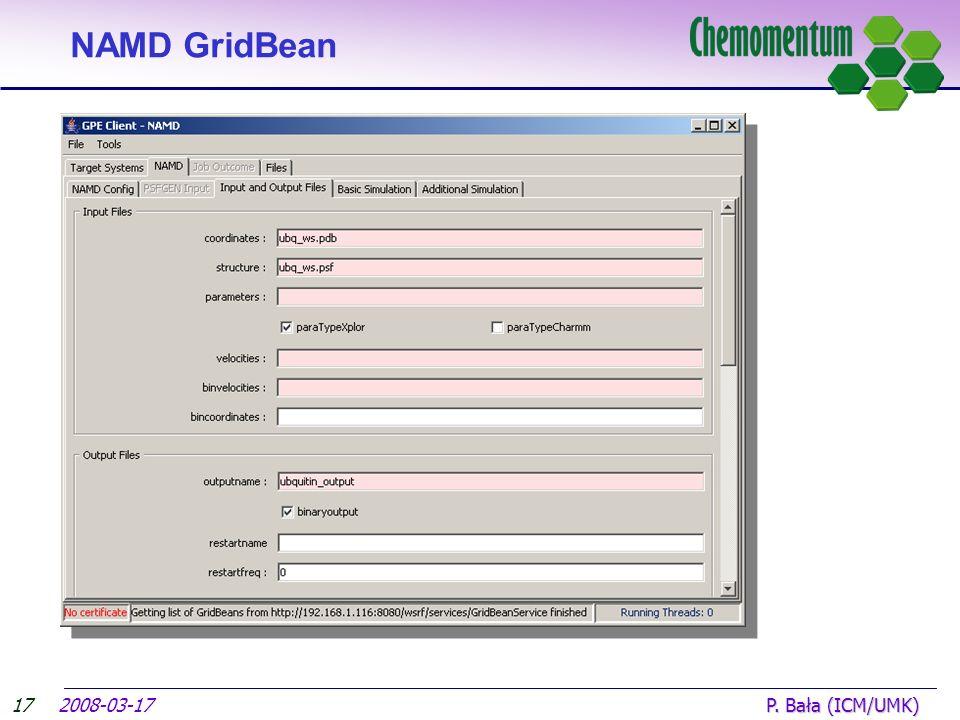 17 NAMD GridBean 2008-03-17 P. Bała (ICM/UMK)