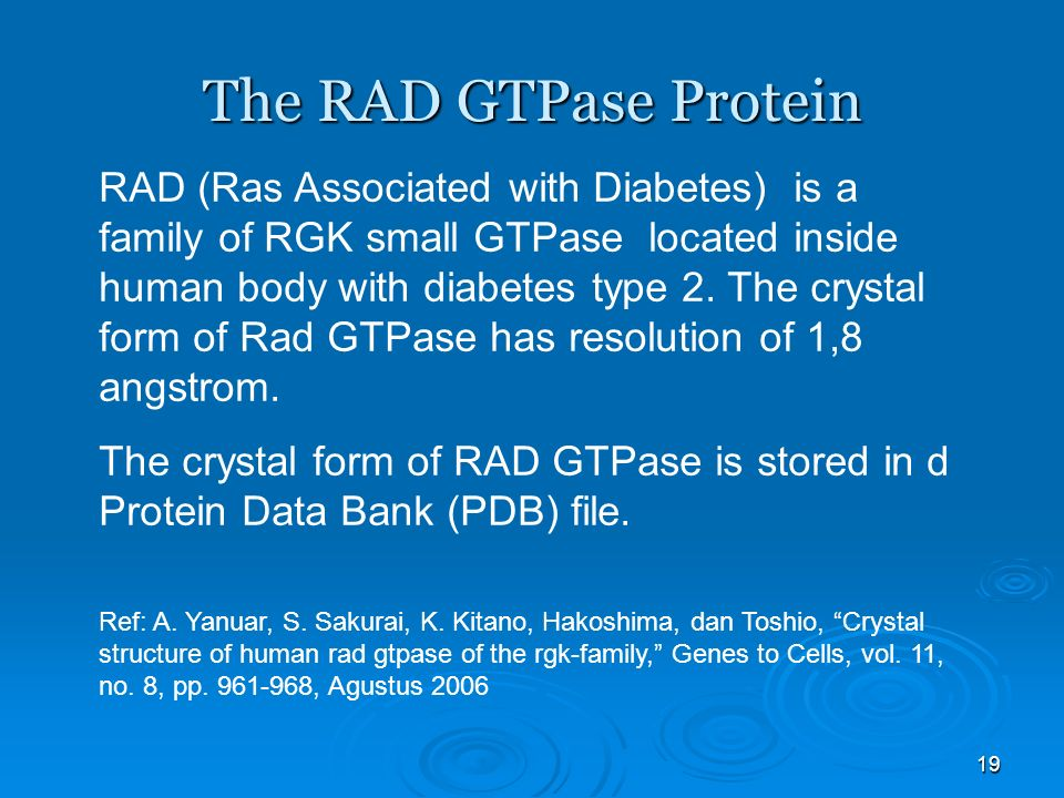 19 RAD (Ras Associated with Diabetes) is a family of RGK small GTPase located inside human body with diabetes type 2.