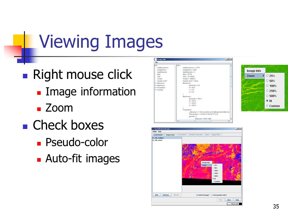 35 Viewing Images Right mouse click Image information Zoom Check boxes Pseudo-color Auto-fit images