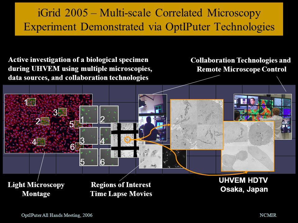 OptIPuter All Hands Meeting, 2006NCMIR iGrid 2005 – Multi-scale Correlated Microscopy Experiment Demonstrated via OptIPuter Technologies 1 2 3 4 5 6 1 2 3 4 56 UHVEM HDTV Osaka, Japan Active investigation of a biological specimen during UHVEM using multiple microscopies, data sources, and collaboration technologies Collaboration Technologies and Remote Microscope Control Light Microscopy Montage Regions of Interest Time Lapse Movies