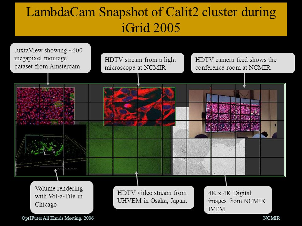 OptIPuter All Hands Meeting, 2006NCMIR LambdaCam Snapshot of Calit2 cluster during iGrid 2005 JuxtaView showing ~600 megapixel montage dataset from Amsterdam HDTV stream from a light microscope at NCMIR HDTV camera feed shows the conference room at NCMIR Volume rendering with Vol-a-Tile in Chicago 4K x 4K Digital images from NCMIR IVEM HDTV video stream from UHVEM in Osaka, Japan.