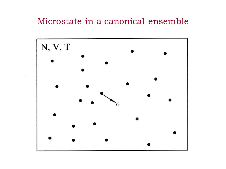 Microstate in a canonical ensemble