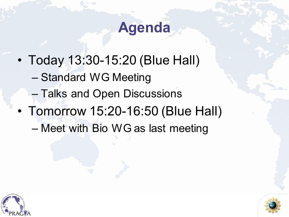 Agenda Today 13:30-15:20 (Blue Hall) –Standard WG Meeting –Talks and Open Discussions Tomorrow 15:20-16:50 (Blue Hall) –Meet with Bio WG as last meeti