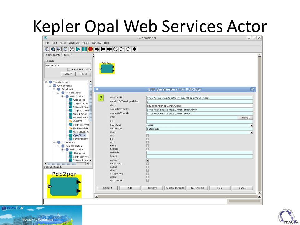 Kepler Opal Web Services Actor