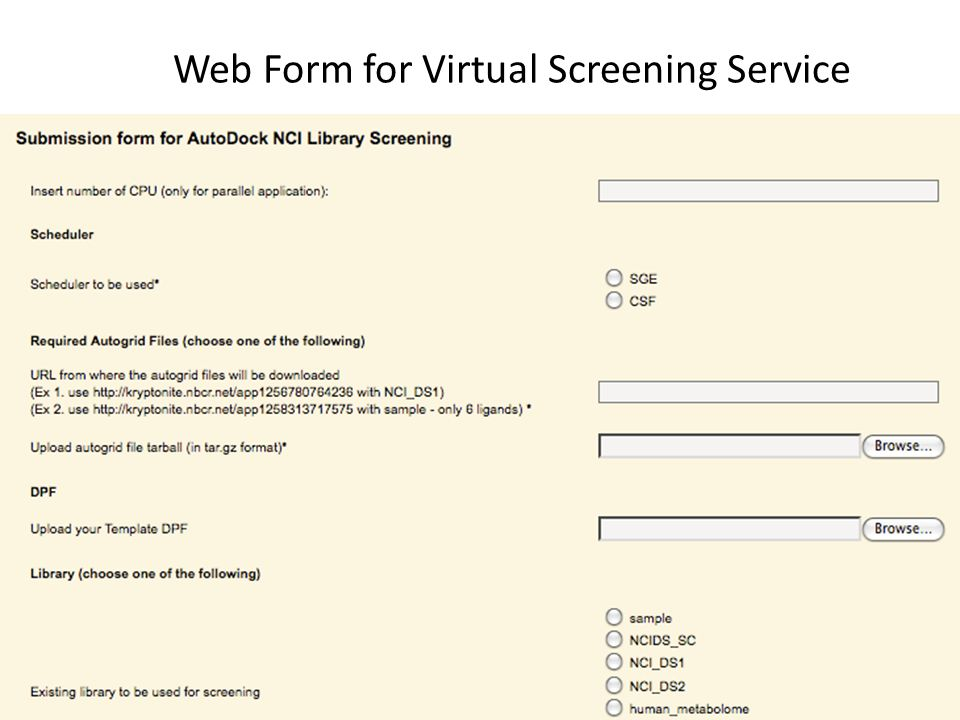 Web Form for Virtual Screening Service