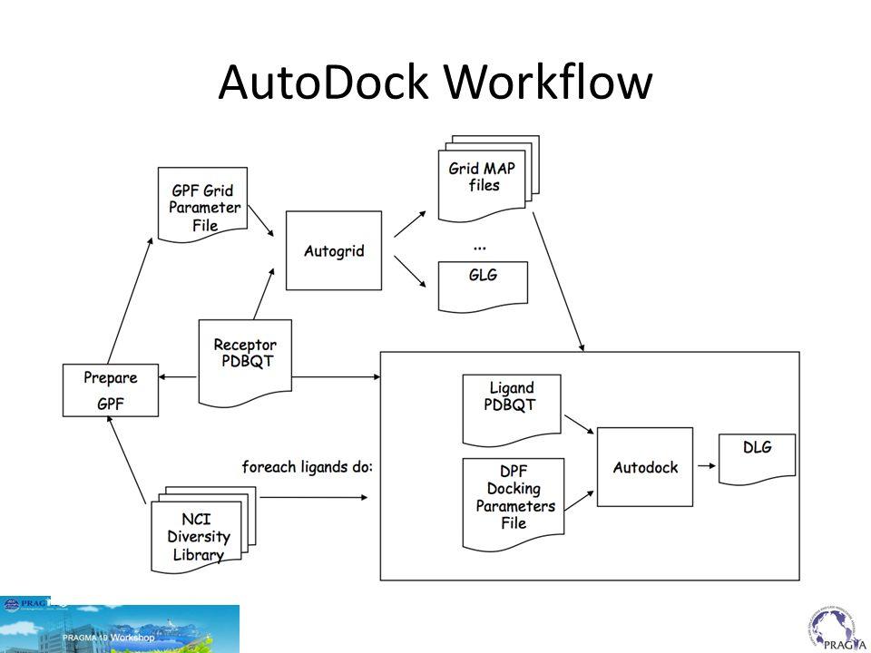 AutoDock Workflow