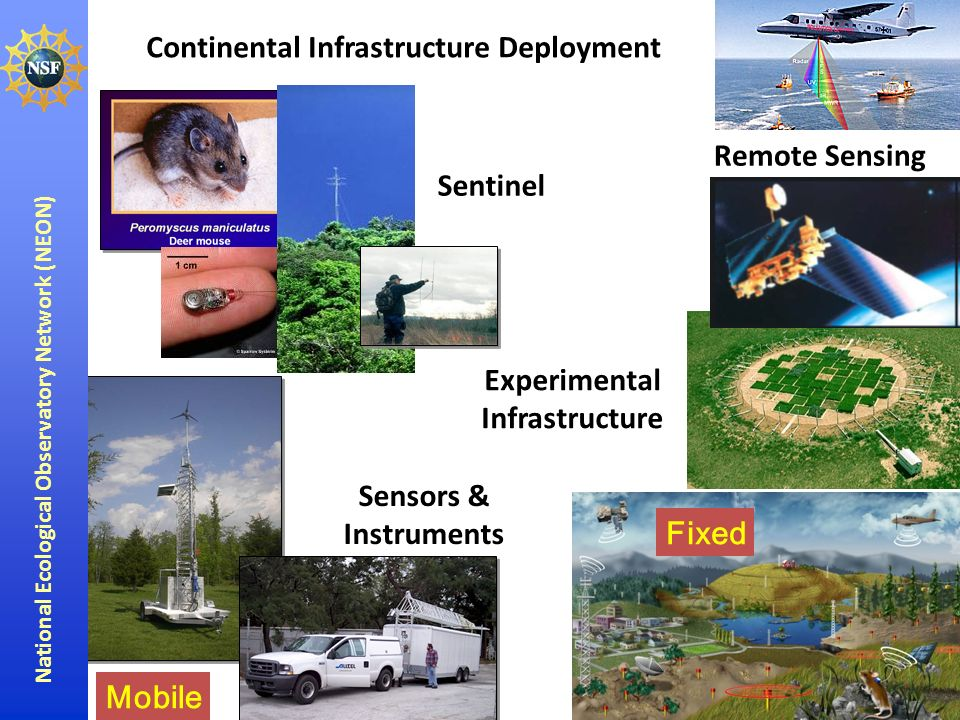 National Ecological Observatory Network (NEON) Continental Infrastructure Deployment Experimental Infrastructure Sensors & Instruments Remote Sensing Mobile Fixed Sentinel