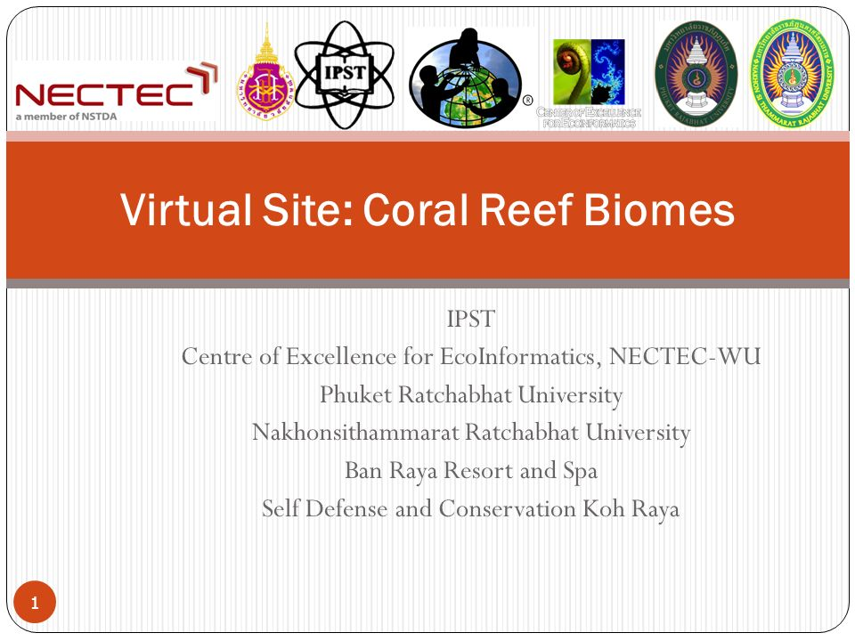 IPST Centre of Excellence for EcoInformatics, NECTEC-WU Phuket Ratchabhat University Nakhonsithammarat Ratchabhat University Ban Raya Resort and Spa Self Defense and Conservation Koh Raya Virtual Site: Coral Reef Biomes 1