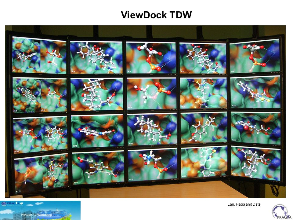 Lau, Haga and Date ViewDock TDW